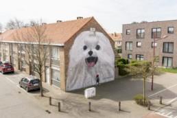 Escif © Toerisme Oostende vzw